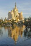 池塘在莫斯科动物园里 免版税库存照片
