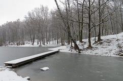 池塘在11月底 免版税库存图片