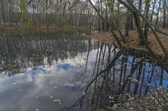 池塘在10月底 免版税库存图片