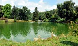 池塘在Horsovsky Tyn,捷克 免版税库存图片