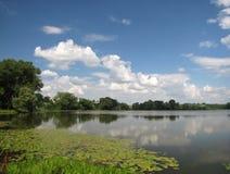 池塘在Zbarazh 免版税库存照片