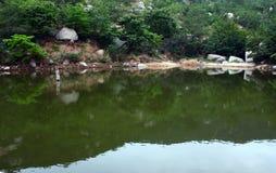 池塘夏天 免版税库存照片