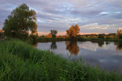 池塘横向 库存图片