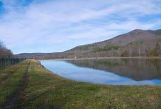 池塘污水 库存图片