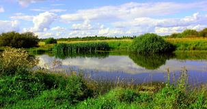池塘由电车轨道和灌木包围,在背景 图库摄影