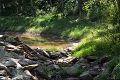 池塘视图 免版税库存照片