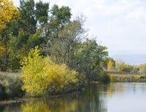 池塘边缘在秋天 库存图片
