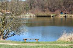 池塘银行 库存图片