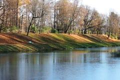 池塘,树的结冰的表面,在秋天,用叶子包括的土地在晚秋天后 库存图片