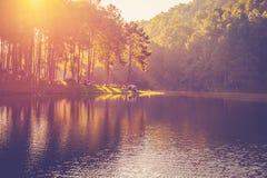 池塘水和日出 免版税库存图片