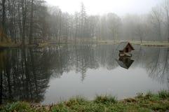 黑池塘 库存照片