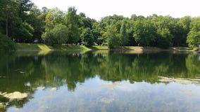 池塘09 免版税库存图片