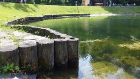 池塘07 图库摄影