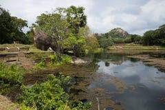黑水池塘  Mihintale,斯里兰卡 免版税库存照片