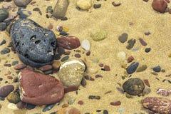 池岩石 图库摄影