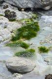池岩石 trevaunance小海湾,圣艾格尼丝 库存图片