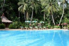 池手段游泳 库存照片