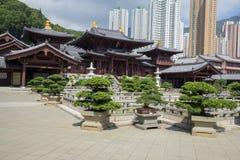 池氏林女修道院,唐朝样式寺庙,香港 库存图片