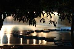 池游泳 库存图片
