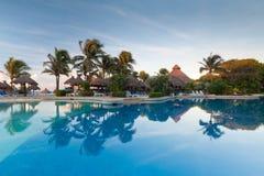 池热带日出的游泳 免版税库存图片