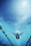 水池的游泳者 图库摄影