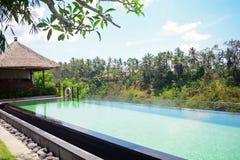水池, Ubud,巴厘岛,印度尼西亚 免版税图库摄影
