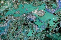 水污染场面 库存图片