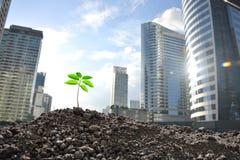 污染概念有害的环境人力的需要回收根土壤结构树 库存图片