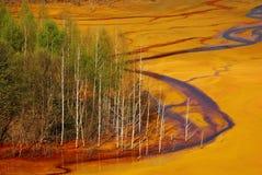 污染水 免版税图库摄影