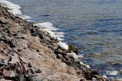 水污染 库存图片