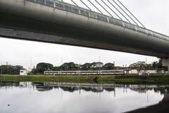 污染Pinheiros河 库存图片