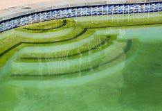 污浊的后院游泳池和露台 免版税库存图片