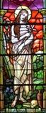 污迹玻璃窗Notre Dame大教堂 免版税图库摄影