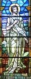污迹玻璃窗Notre Dame大教堂 图库摄影