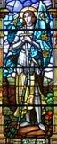 污迹玻璃窗Notre Dame大教堂 库存图片