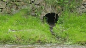 污水在河 股票录像