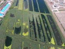 污水处理厂Slavyansk在库班河州农业大学 为污水处理浇灌在一个小城市 在水银行的明亮的芦苇  免版税库存图片