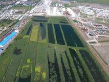 污水处理厂Slavyansk在库班河州农业大学 为污水处理浇灌在一个小城市 在水银行的明亮的芦苇  库存图片