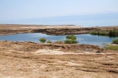 污水池在死海 免版税库存照片