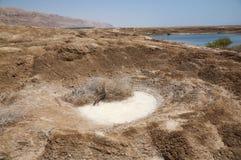 污水池在死海 免版税图库摄影