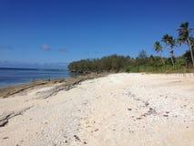汤加海滩 库存照片