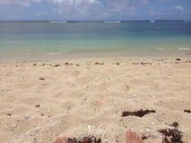汤加海滩 库存图片