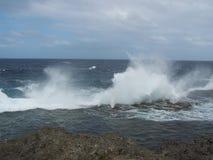 汤加群岛海岸线小屋6 免版税库存图片