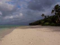 汤加群岛海岸线 免版税库存照片