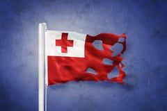 汤加飞行被撕毁的旗子反对难看的东西背景的 库存图片
