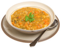 汤厚实的蔬菜 库存图片