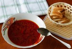 汤和油煎方型小面包片板材  库存图片