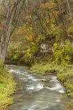 汤普森小河在秋天 库存图片