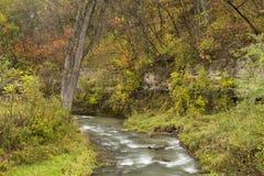 汤普森小河在秋天 库存照片