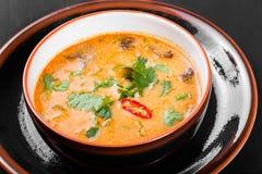 汤用在碗的肉用牛至、胡椒和菜在黑暗的木背景 库存照片